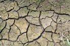 Bodemkwaliteit op klei (BASIS), akkerbouw en vollegrondsgroenten