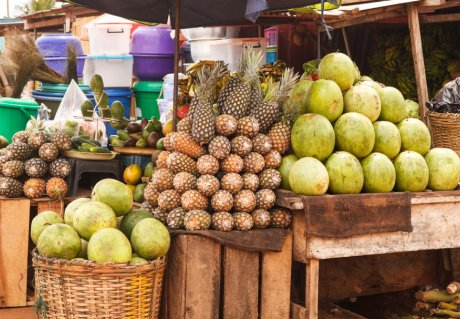 The influence of climate scenarios on food supply in Accra, Ghana