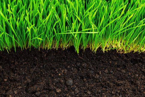 soil quality organic matter pyrogenic carbon