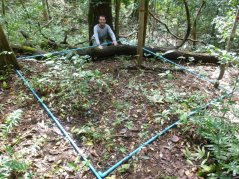 field studies in a protected area of forest where more than 10,000 seeds, seedlings, and trees were measured and monitored