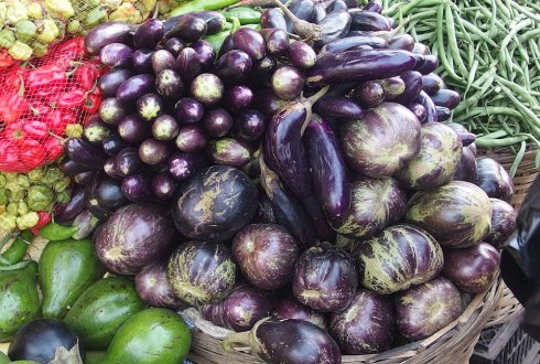 HortiFresh to stimulate fruits and vegetables sector in West-Africa