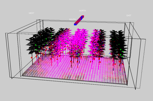 The modelled 3D scene consists of 5 double rows of tomato plants, greenhouse walls and one or more LED modules that consist of a series of LED lenses with a specific emission pattern. The fate of the light (mix of red and blue) is shown by an increase in colour intensity.