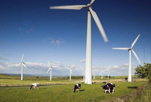Koeien en kansen-ondernemers ondernemen duurzaam_ Koeien&Kansen
