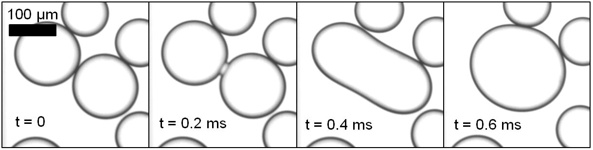 Coalescence may happen when droplet's interfaces are close. Image via Prof.Schroen (WUR)