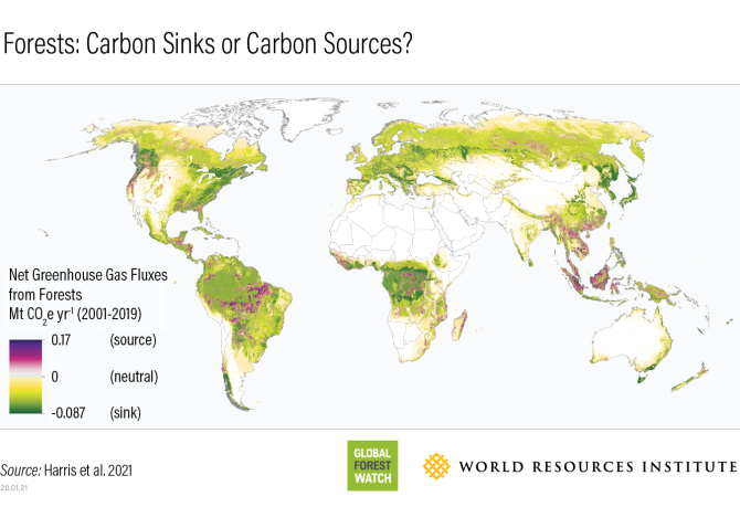 forests-global-net-carbon-flux-wri.png