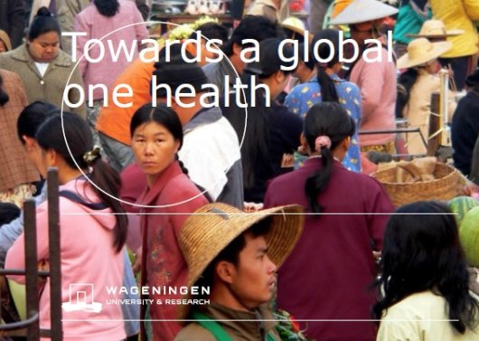 Towards a Global One Health