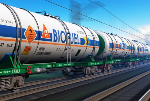 Large-scale production of biofuels