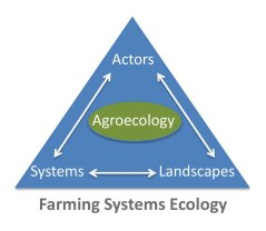 Figure 1: Farming Systems Ecology portraits Agroecology in the realm of systems analysis, landscape processes and collective action.