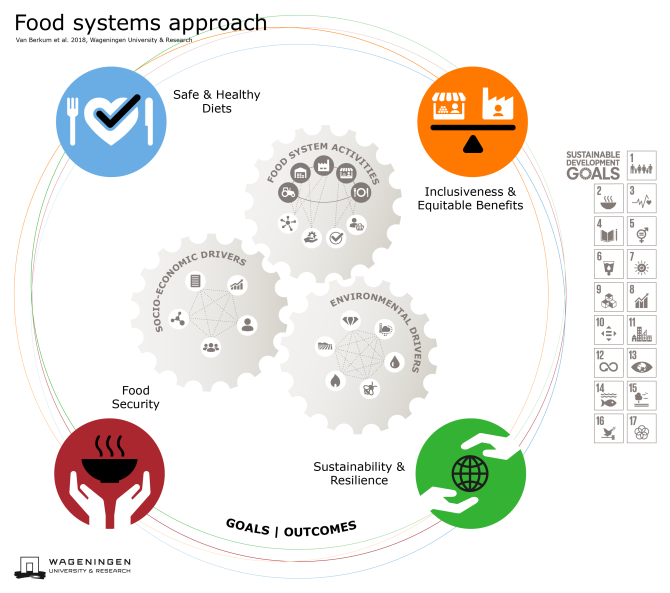 Visual of Food Systems Approach and connection with the SDG's