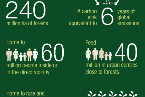International Conference on the future of the Central African Forests and its People
