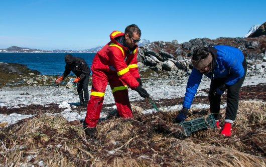 Greenland beach clean-up, photo by W.J. Strietman