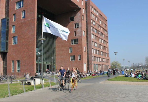 Wageningen University & Research once again top of the table for full-time Master's degree programmes