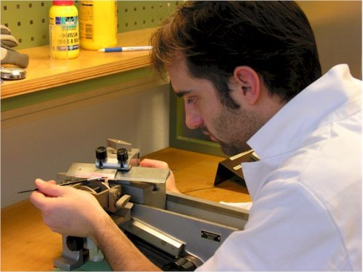 Thin sectioning with a Reichert microtome for wood determination and image analysis