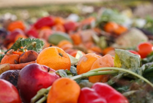 Food experts issue global agenda to halve food loss and waste by 2030