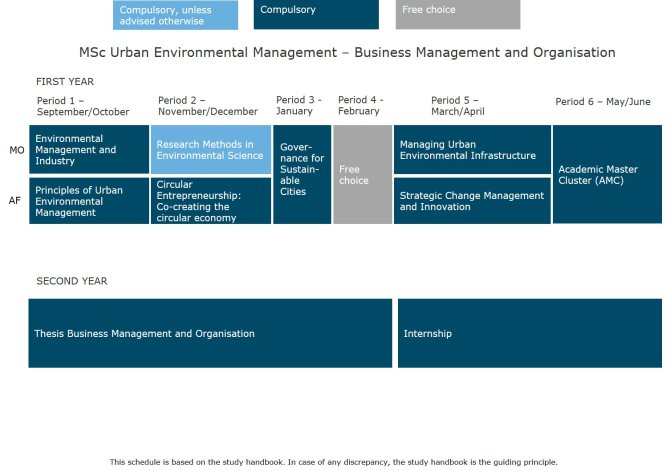 MSc Urban Environmental Management - Business Management and Organisation.jpg