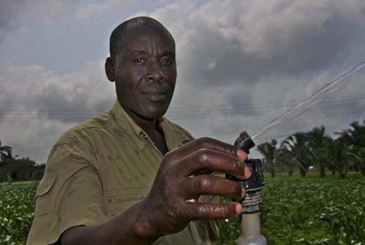Irrigation in Ghana.jpg
