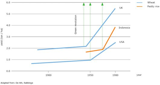 Before the Green Revolution, the yield of wheat increased every year with 3-4 kg per ha due to agronomic improvements and the use of improved seeds. The Green Revolution boosted this increase enormously to 50-75 kg per year. This is visualised in the graph as a discontinuity, showing the yearly yield-increase before and after the Green Revolution in the UK and the USA. With some delay, the Green Revolution also affected South-East Asia, as illustrated by the discontinuity of the yield increase of paddy rice in Indonesia.