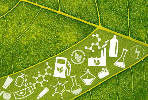 Biobased Products for a Sustainable (Bio)economy