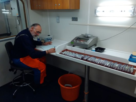 During the Blue Whiting Survey, all caught whiting is sorted, measured and weighed. The catchment area is surveyed on a systematic, predefined cruise track. so the stock of blue whiting (Micromesistius Poutassou) can be mapped in the best possible way by the researchers.