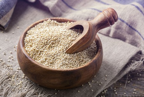 Pre-treatment and digestion of plant proteins - The quinoa Ccse