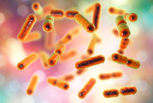 New method measures air to reveal how intestinal microbes work