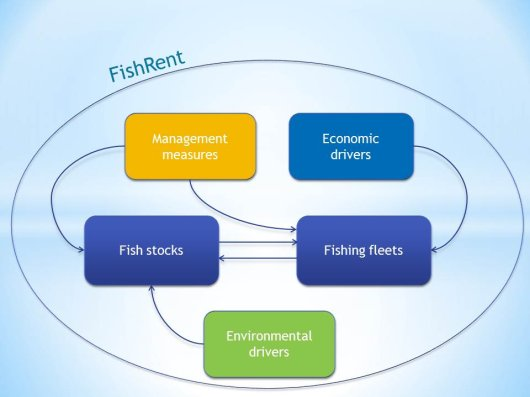 FishRent model