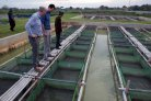 Program to develop breeding programs for Indonesian aquaculture extended