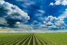 Klimaatslimme landbouw