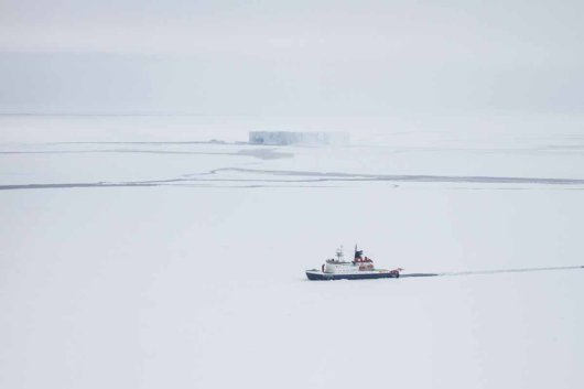 Research vessel Polarstern in the winter sea ice of the Weddell Sea. Photo: Jan Andries van Franeker