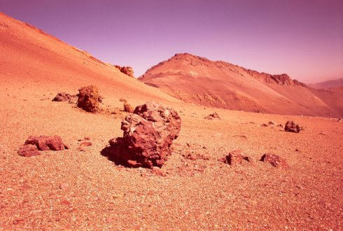 researching whether or not it is possible to grow plants on Mars