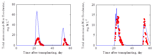 Fig. 1 Concentrations of total ammoniacal-N in floodwater: a) Simulated using Chowdary et al. (2004) and b) simulated using the proposed model, against observations reported by Fillery et al. (1984).