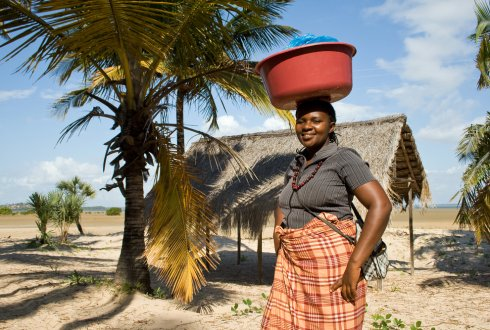 Exploring opportunities for rural livelihoods and food security in Central Mozambique