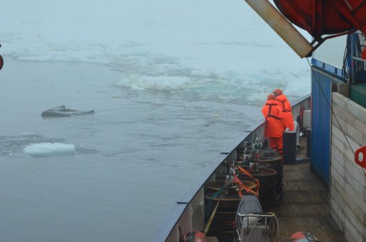 The SUIT (Surface and Under-Ice Trawl) team watches the net as it shears to the side of the ship, ready to dive underneath the ice (Photo Susanne Kühn)