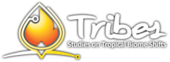 tribes-logo-negwshadow-tropical-biome-shifts.png