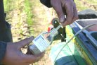 Stijging nitraatconcentratie in het grondwater