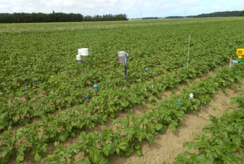Smart date use in crop growth and yield modelling