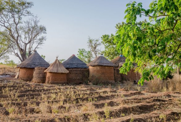 Understanding Entrepreneurship at the Base of the Pyramid in Developing Countries. Insights From Small-scale Vegetable Farmers in Benin