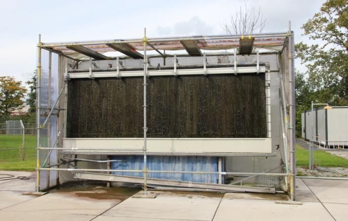 Wastewater cleaning using microalgae biofilms - WUR