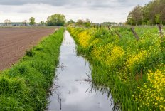 Exposure Assessment of Plant Protection Products for Ground and Surface Water Course
