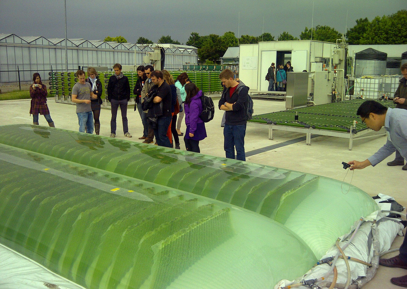 Calendar Design Cover : Microalgae process design from cells to photobioreactors