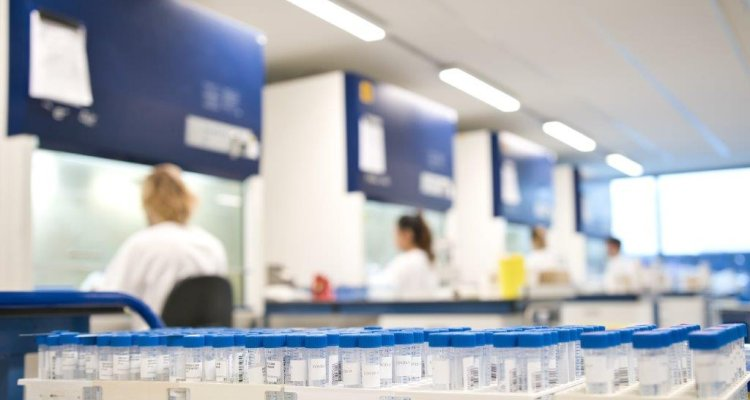 Corona diagnostics Wageningen Bioveterinary Research (WBVR)