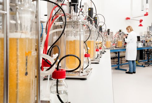 Wageningen University & Research achieves breakthrough in organic acid production