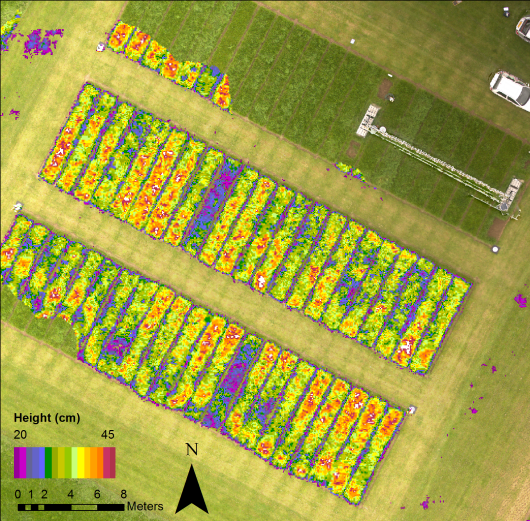 Mapping grassland traits