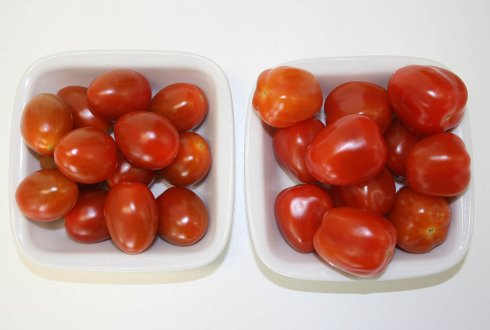 Flavour research on snack tomatoes