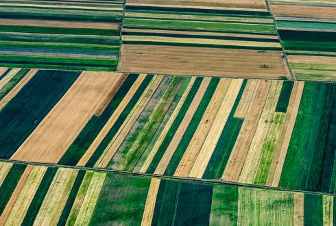 Integrated assessment of farm level adaptation to climate change in agriculture - An application to Flevoland, The Netherlands