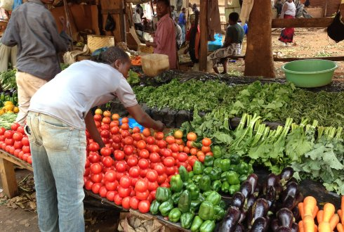 Interventions fruit and vegetable sector contribute to Food and Nutrition Security