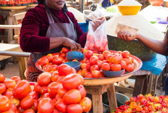 WUR and KIT identify opportunities for food security in Nigeria