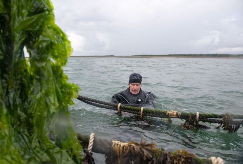 Seaweed farming (foto Leonard Passchier - Resource)