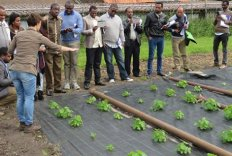 Cursisten Integrated Seed Sector Development in het veld