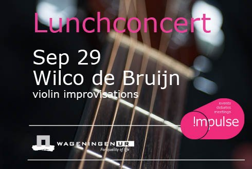 Wilco de Bruijn plays 'Violin-soundwork'